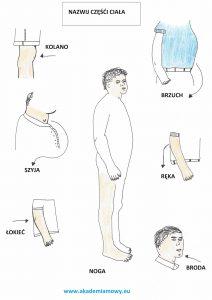 rysunki różnych części ciała wraz z podpisem